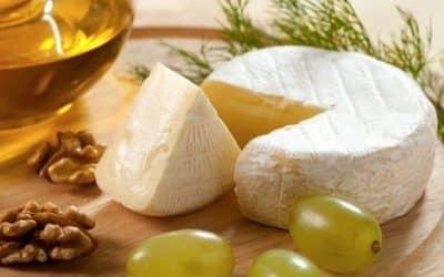 Какво трябва да знаете за млечните деликатеси